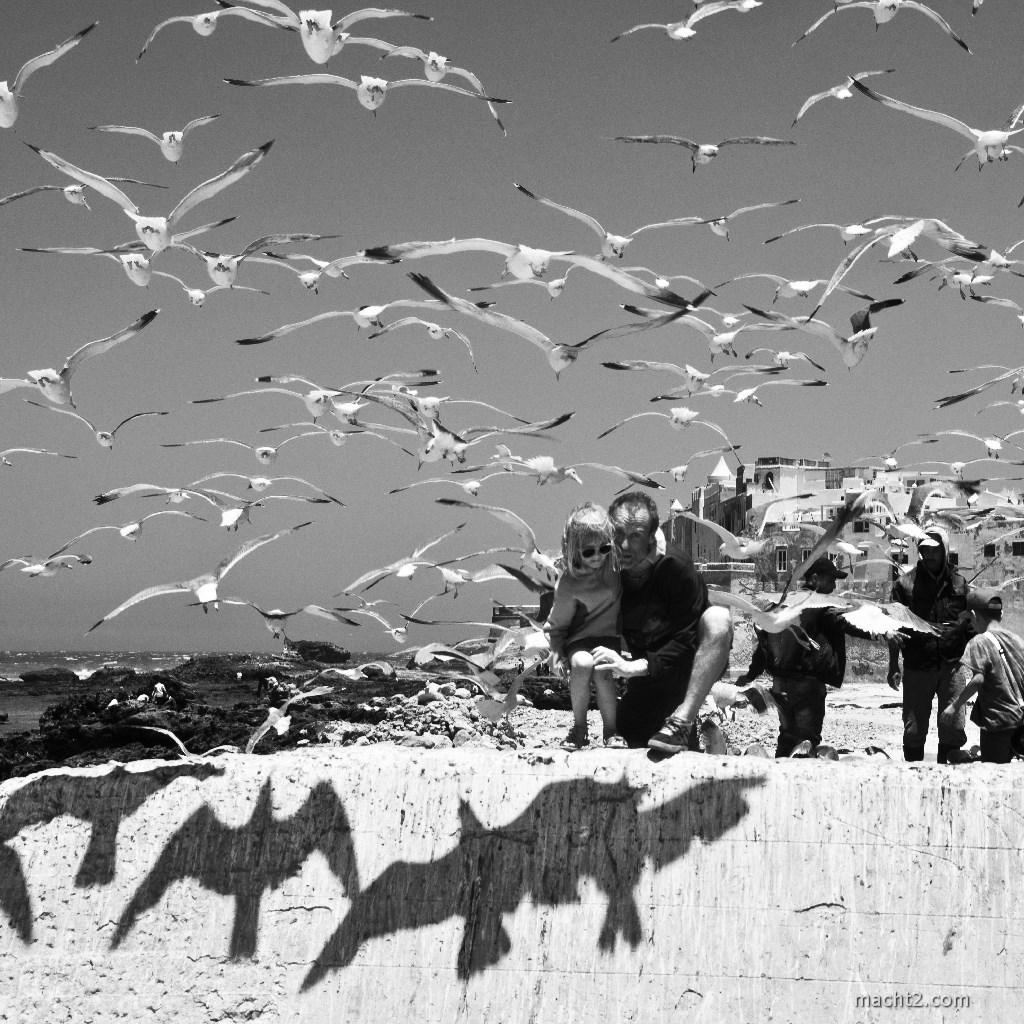 Essaouira best foto 2017